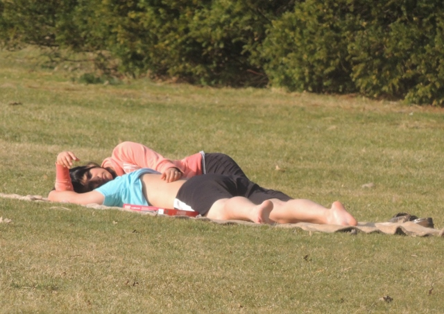 couples laying on grass together,images