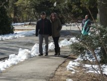 couples strolling in park,pictures