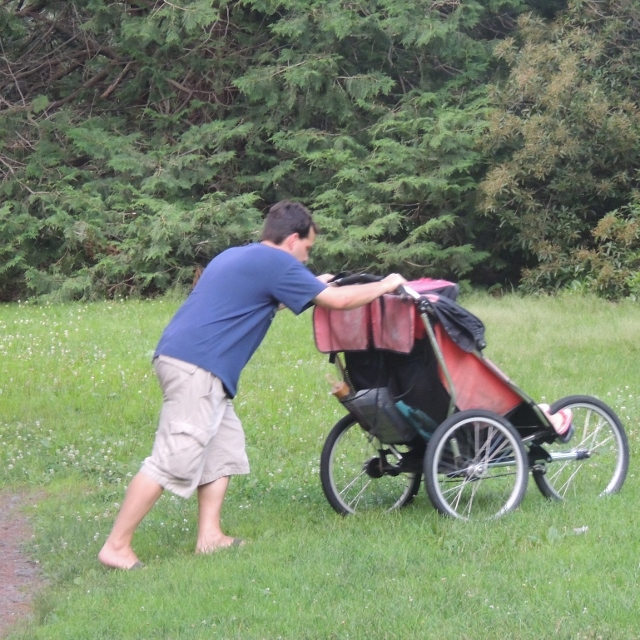 father pushing stroller in park, photos,pictures