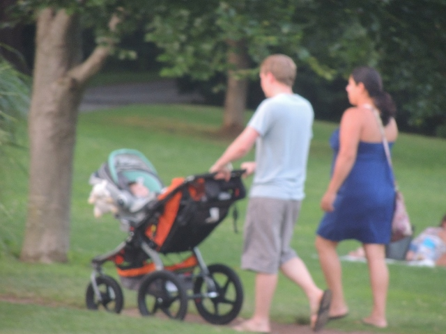 father pushing stroller with mother,love displays