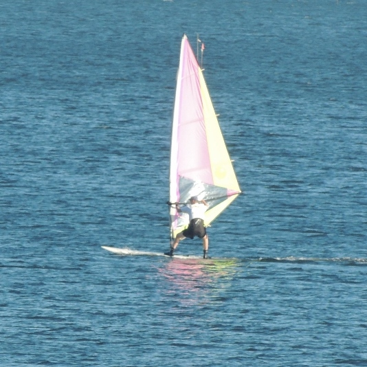 man wind surfing in long island sound,images,pics