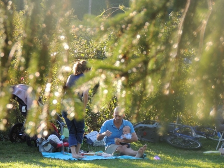 man with baby picnic in park,amazing picture