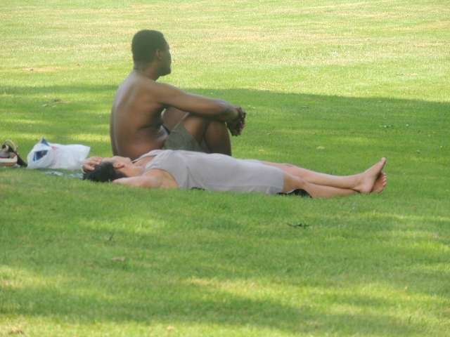 mixed couple lying sitting on grass,images