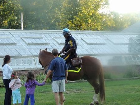 police officer on horseback,elizabeth park-pictures