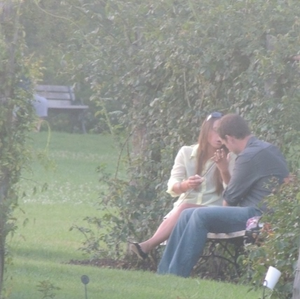 romantic couple sitting on bench,photo images